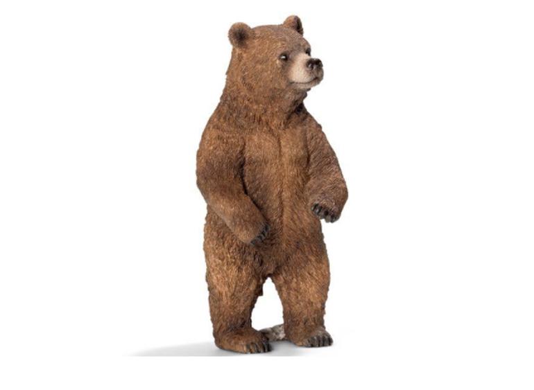 Mô hình động vật Schleich Gấu Xám Bắc Mỹ Mẹ