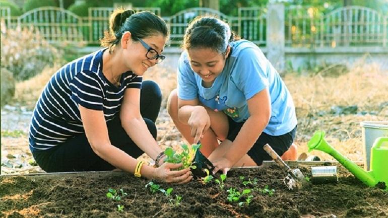 trồng trọt
