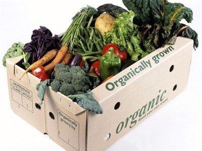Thực phẩm hữu cơ được sản xuất theo công nghệ sạch