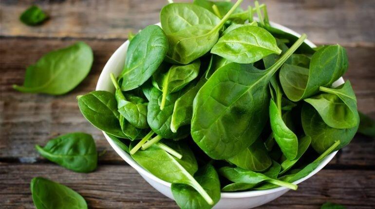 Rau bina -một loại rau đa năng giúp bạn cai nghiện thuốc lá hiệu quả