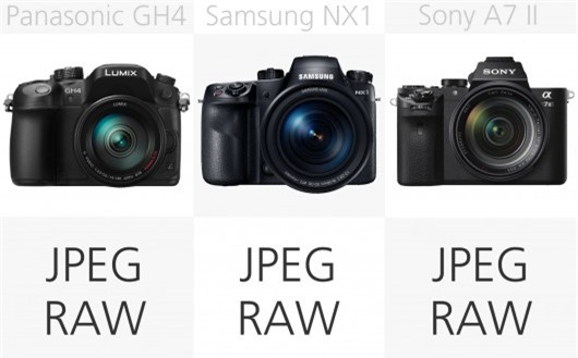 High-end mirrorless camera file type comparison (row 2)