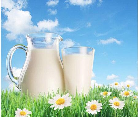 Sữa ngoại hay sữa nội? Sự so sánh nào là chính xác?