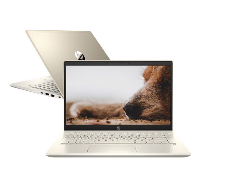 Laptop HP Pavilion 14-dv0507TU 46L76PA