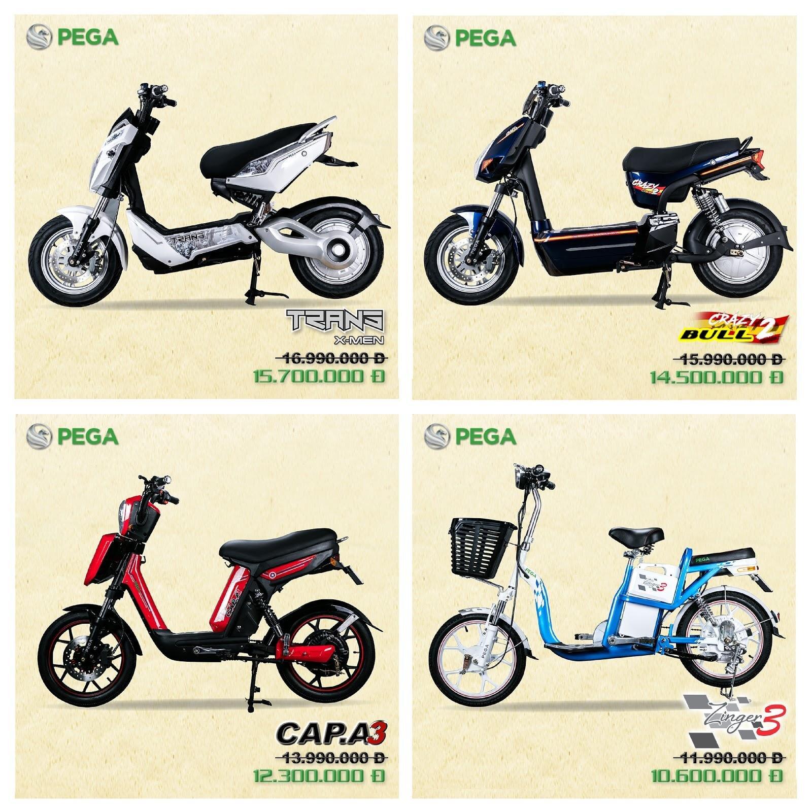 các loại xe đạp điện pega cho nam giới