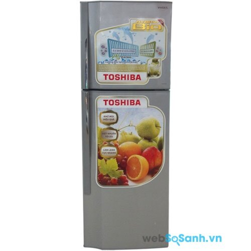 Toshiba GR-S25VPB (nguồn: internet)