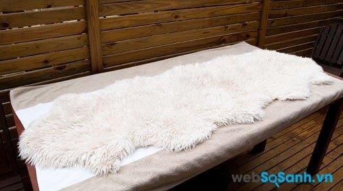 Phơi chăn lông cừu nơi khô thoáng, trành có vật nóng