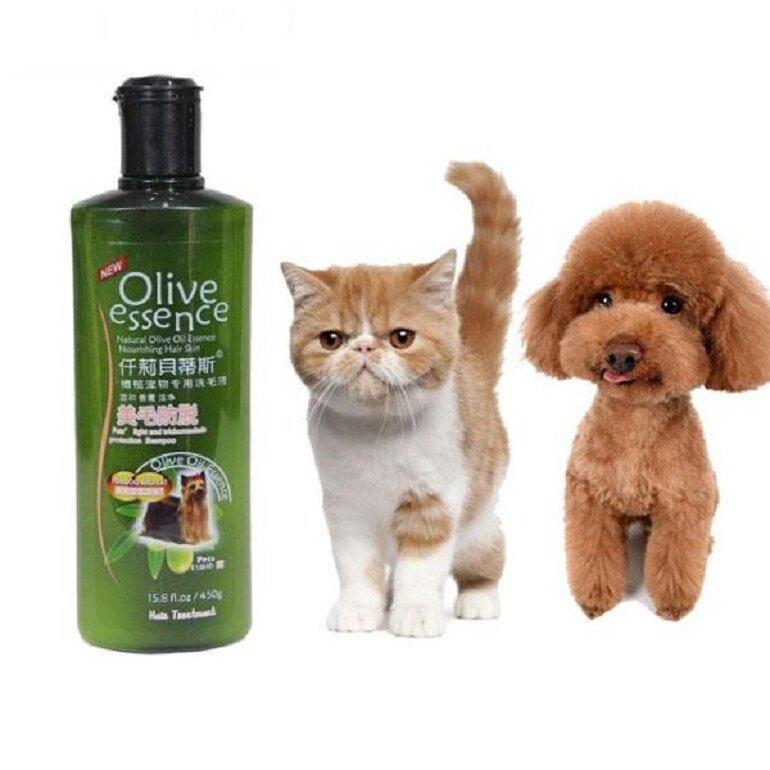 Sữa tắm Olive cho mèo sử dụng được cho chó