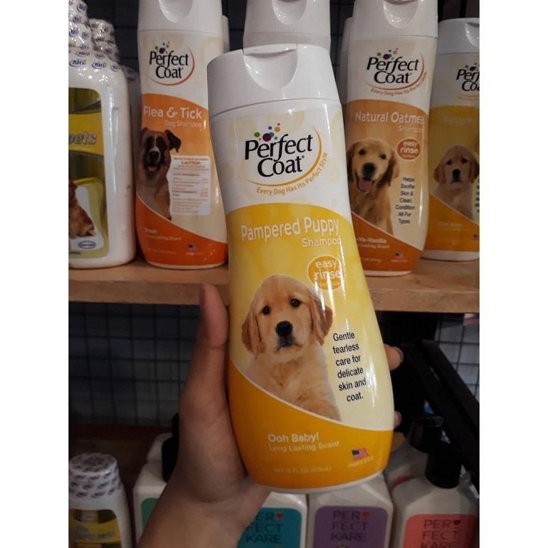Sữa tắm 8in1 Perfect Coat cho chó thơm hơn và trị mùi hôi hiệu quả