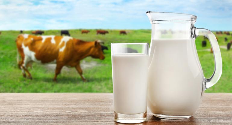 sữa hữu cơ