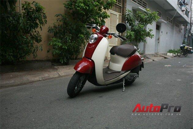 Honda Crea Scoopy 50cc: Scooter lý tưởng trong phố 1