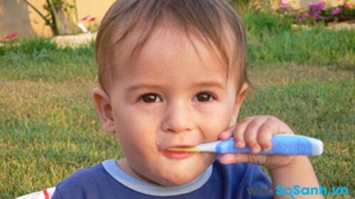 Vệ sinh răng miệng cho trẻ hai lần một ngày