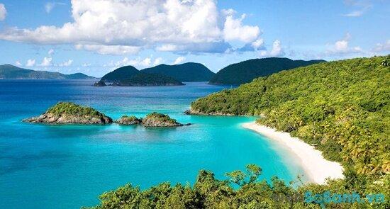 Bãi biển trong xanh đến tuyệt vời (nguồn: internet)