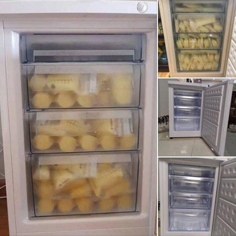 tủ đông trữ sữa hòa phát