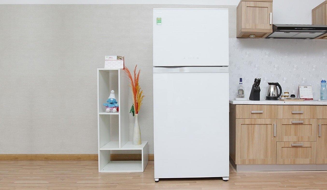 Toshiba GR-S19VPP – gợi ý lý tưởng cho câu hỏi tủ lạnh gia đình nên mua loại nào