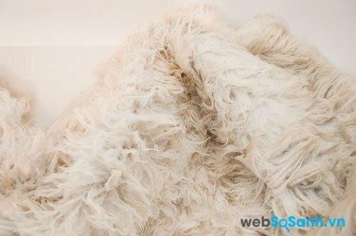 Dùng chế độ vắt nhẹ để vắt khô chăn lông cừu