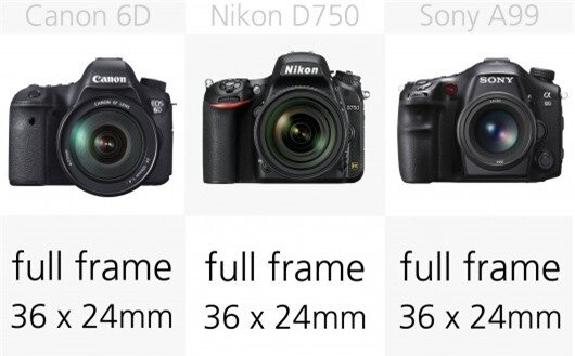 The full frame sensors in these cameras are considerably larger than the APS-C sensors in ...