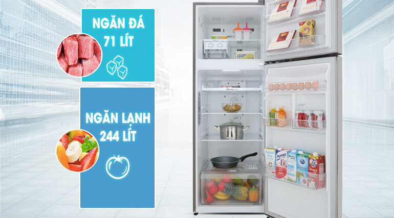 Tủ lạnh LG Inverter 315 lít GN-M315PS