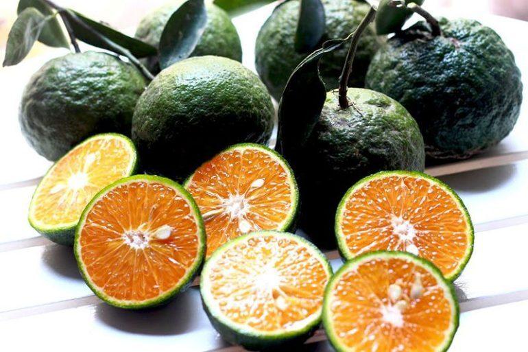 Cam - một loại trái cây đa năng giúp bạn cai nghiện thuốc lá hiệu quả