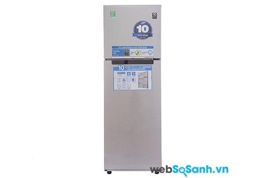 Tủ lạnh Samsung RT-25FARBDSA/SV (nguồn: internet)