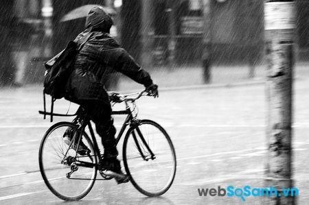Có thể đi xe đạp dưới mọi loại thời tiết