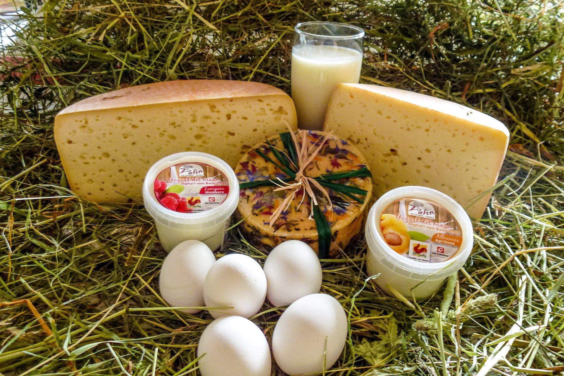 Sữa và các chế phẩm từ sữa giàu canxi và vitamin D tốt cho xương