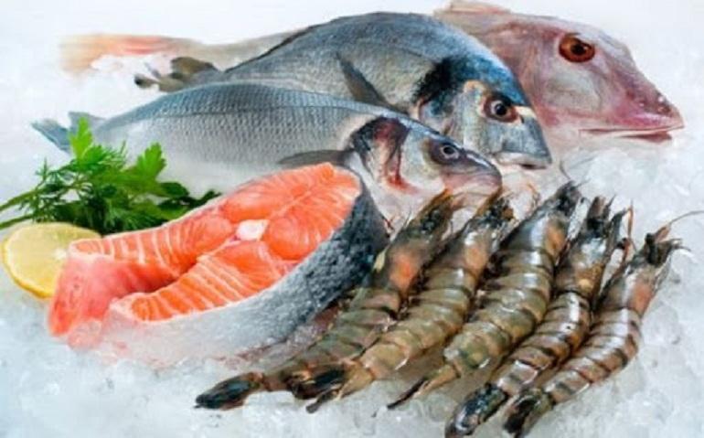 Thức ăn cho mèo con tốt nhất là thịt, tôm, cá