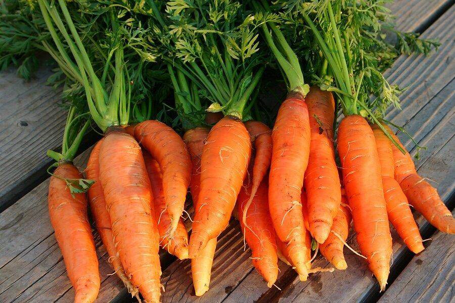 Nấu cà rốt với các món ăn cho thực đơn mang thai 3 tháng đầu
