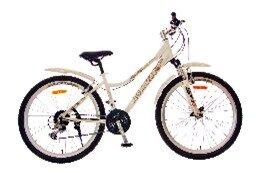Xe đạp thể thao - AMT 2624 (26