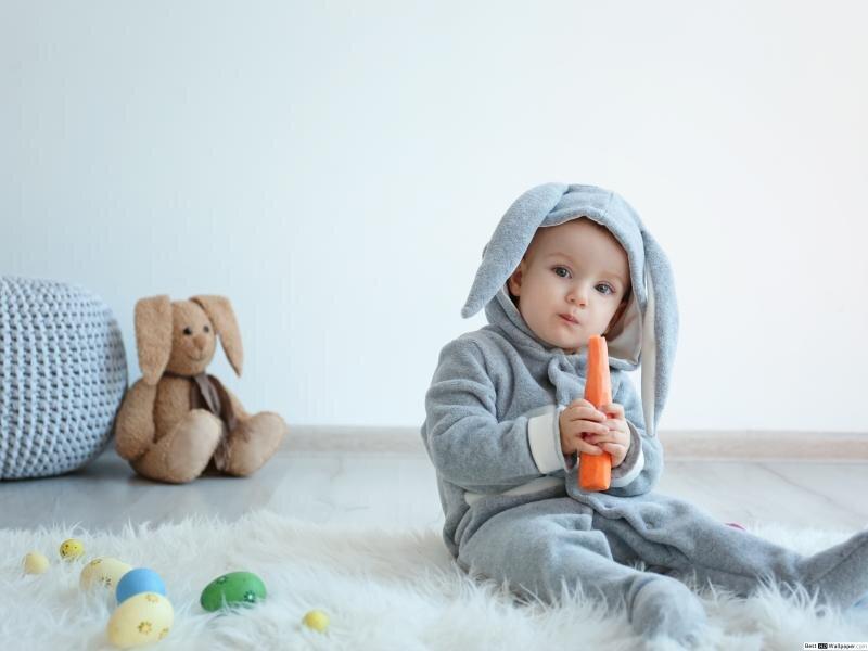 Cà rốt phải được chọn lọc kỹ càng, chất lượng dinh dưỡng tốt