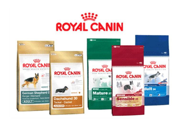 Thức ăn khô cho chó thương hiệu Royal Canin