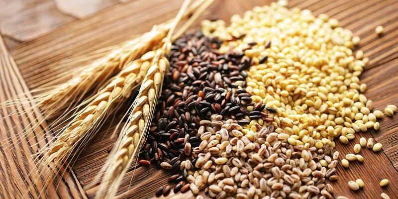 Ngũ cốc giúp đa dạng thực đơn mỗi ngày và cung cấp đủ chất
