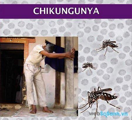 Sốt chikungunya gây đau khớp nặng kéo dài trong nhiều tuần (nguồn: internet)