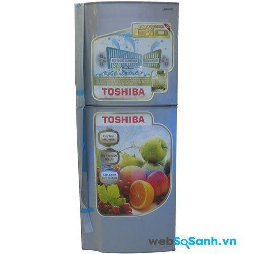 Toshiba GR-S19VPP (nguồn: internet)