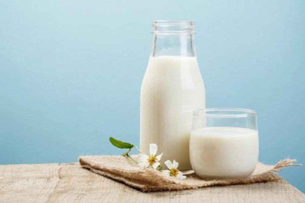 Sữa là thực phẩm cung cấp nguồn dinh dưỡng dồi dào cho cơ thể và mang lại lợi ích tuyệt vời đối với não bộ
