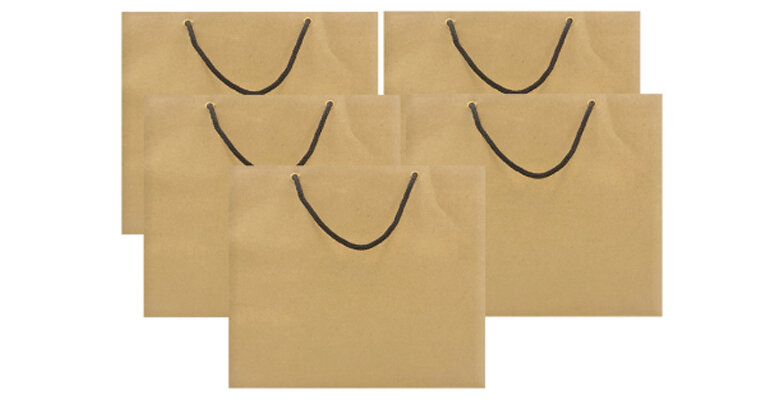 Túi giấy Kraft là gì ? Có mấy loại ? Giá bao nhiêu ?   websosanh.vn