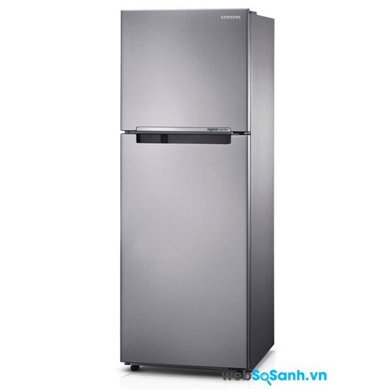 Tủ lạnh Samsung RT22FARBDSA/SV (nguồn: internet)