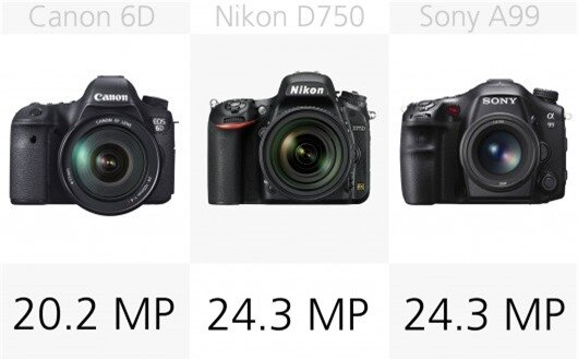 Most of the cameras in our comparison come in around 20 to 24-megapixels