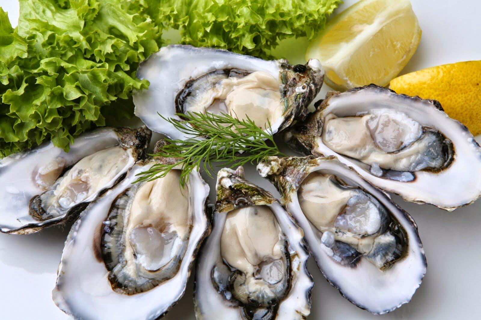 Loại hải sản này được chế biến thành những món ăn ngon và vô cùng bổ dưỡng cho não bộ và cơ thể