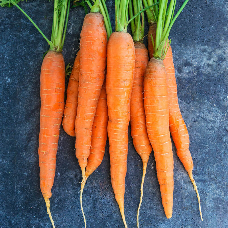 Cà rốt - Thực phẩm tốt cho kinh nguyệt