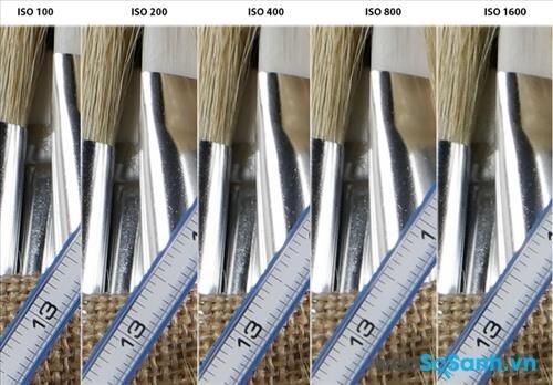Trong bức ảnh định dạng JPEG được chụp bằng lens kit này, các vùng được lấy nét có độ sắc nét cao khi ở ISO 1600, tuy nhiên bạn có thể thấy những vùng ngoài vùng được lấy nét bắt đầu bị nhòe.