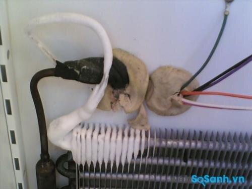 Hệ thống điện trong ủ lạnh mini bị rò rỉ điện khiến tủ lạnh mini bị rò rỉ điện