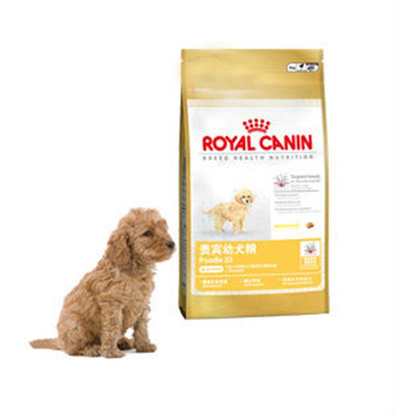 thức ăn khô cho chó dành riêng cho giống cho Poodle con