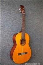 Đàn Guitar Classic Yamaha CG-101A