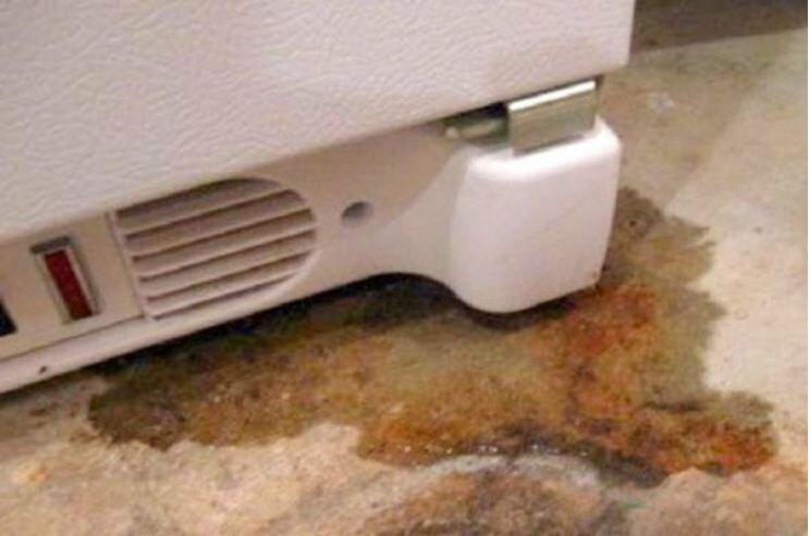 Tủ lạnh bị đọng nước và chảy nước ra sàn