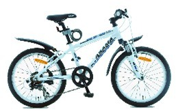 Xe đạp trẻ em - MTB 2001 (20