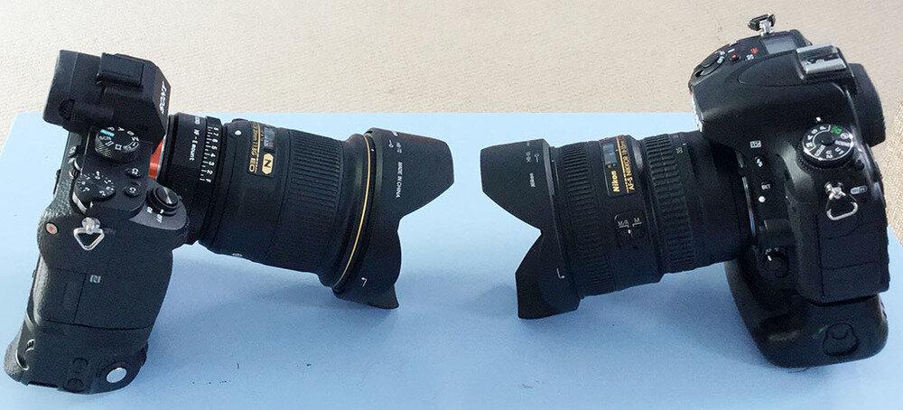 Nikon D750 và Sony A7 II có gì nổi bật?