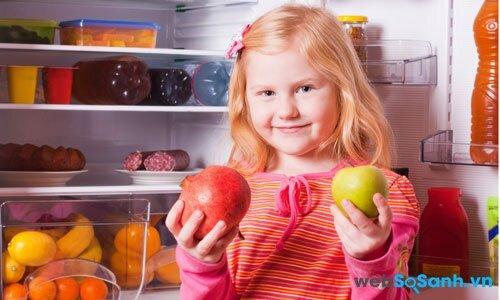 Công nghệ làm lạnh không đóng tuyết giúp tủ lạnh tiết kiệm điện hơn (nguồn: internet)