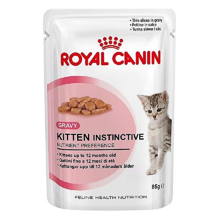 Thức ăn cho mèo Royal Canin thương hiệu uy tín