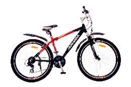 Xe đạp thể thao - AMT 62 (26