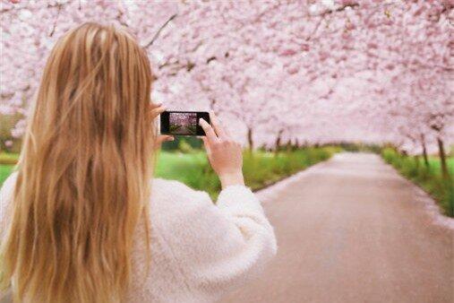 Nghe thì có vẻ buồn cười nhưng trước khi đến với những kỹ thuật chụp hình đẹp, bạn nên đảm bảo rằng ống kính của iPhone phải thực sự sạch sẽ.